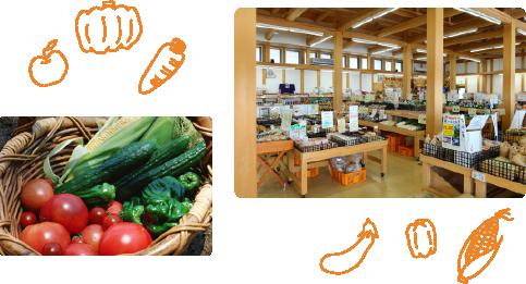 高原野菜・果物