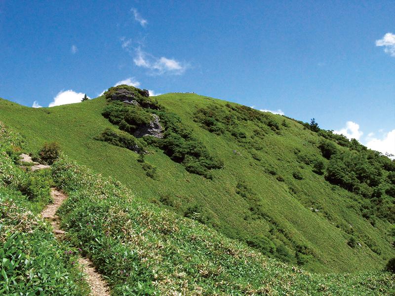 高知県大川村白滝の里の自然満喫ツアー(8月・9月)